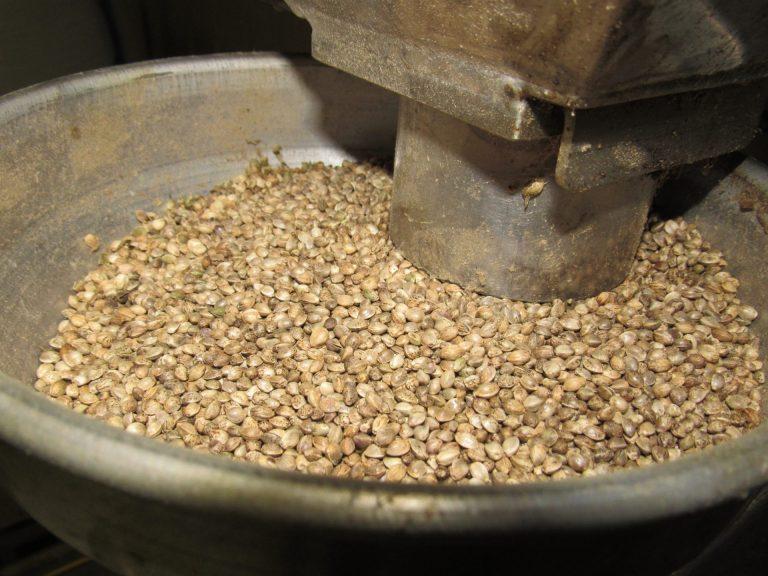 hemp seed mill