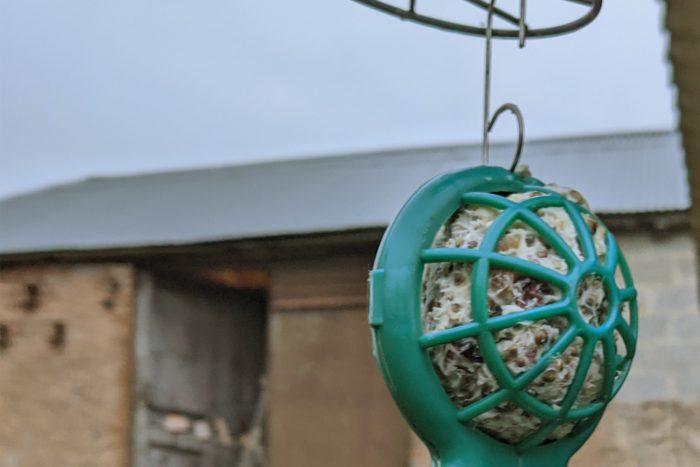 fat bird feeder
