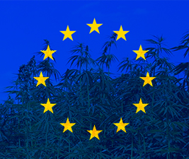 EU Reclassifying CBD as Narcotic
