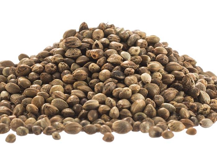 Closeup of Hemp Seeds
